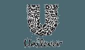 Unilever Bestfoods Brasil