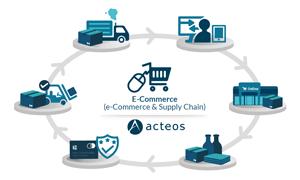 Supply Chain Management und die Entwicklung des E-Commerce